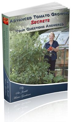 Tomato Book Cover