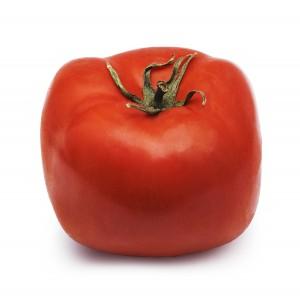 Square Tomato