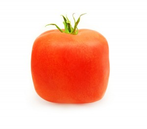 Square Tomatoes
